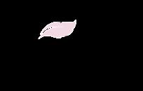 Je crée votre Logo Hyper Canon
