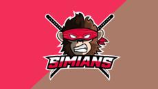 Logo HD pour votre team e-sport / équipe sportive