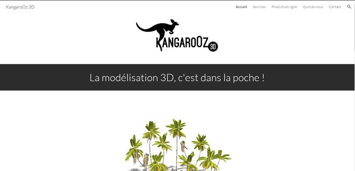 Je corrige votre site internet rédigé en français